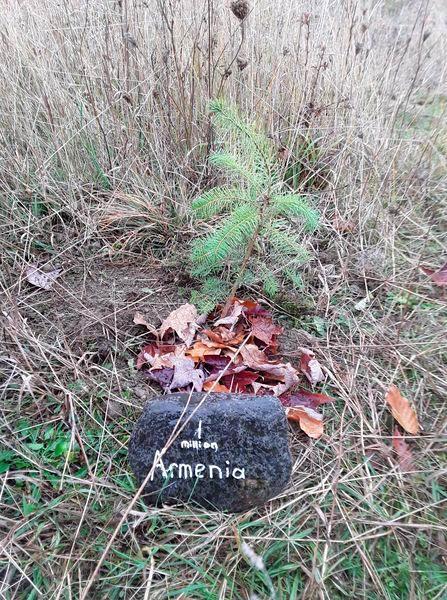 Genocide Memorial Tree Planting