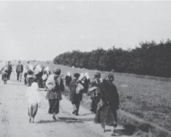 Taken in Kharkiv in 1933, this photograph is from the Innitzer Collection. It shows villagers leaving their home village in search of food in the next town or city. Many people, including children, died of starvation on the road like this, moving from one location to another looking for food.
