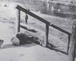 Taken in Kharkiv in 1933, this photograph is from the Innitzer Collection. It shows a female child who died of hunger lying on the steps of a street in Kharkiv.